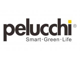 Pelucchi